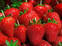 Food-talk-4-u-strawberries