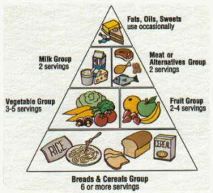 food-talk-4-u-food-pyramid