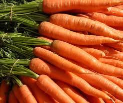 food-talk-4-u-carrots