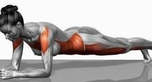 Muscles toned by planking!